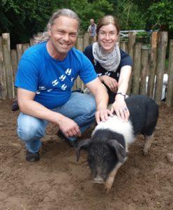 Arche Warder Schwein