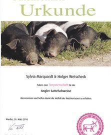 Patenschaftsurkunde Angler Sattelschwein